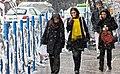 Snowy day of Tehran - 7 March 2013 11.jpg