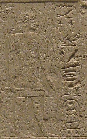 Genealogy of Ankhefensekhmet - The high priest of Ptah, Sokaremsaf (position 2/7)
