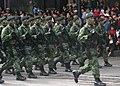 Soldados mexicanos Link.jpg