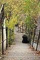 Somewhere around Grünerløkka and Santhanshaugen in Oslo at autumn 2017 stairway.jpg