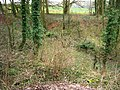Source of the River Meon - geograph.org.uk - 699066.jpg