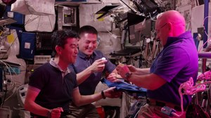 File:Space in 4K - First Lettuce Grown and Eaten in Space.webm