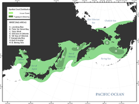 Spotted seal distribution in Bering Sea and surrounding areas.png