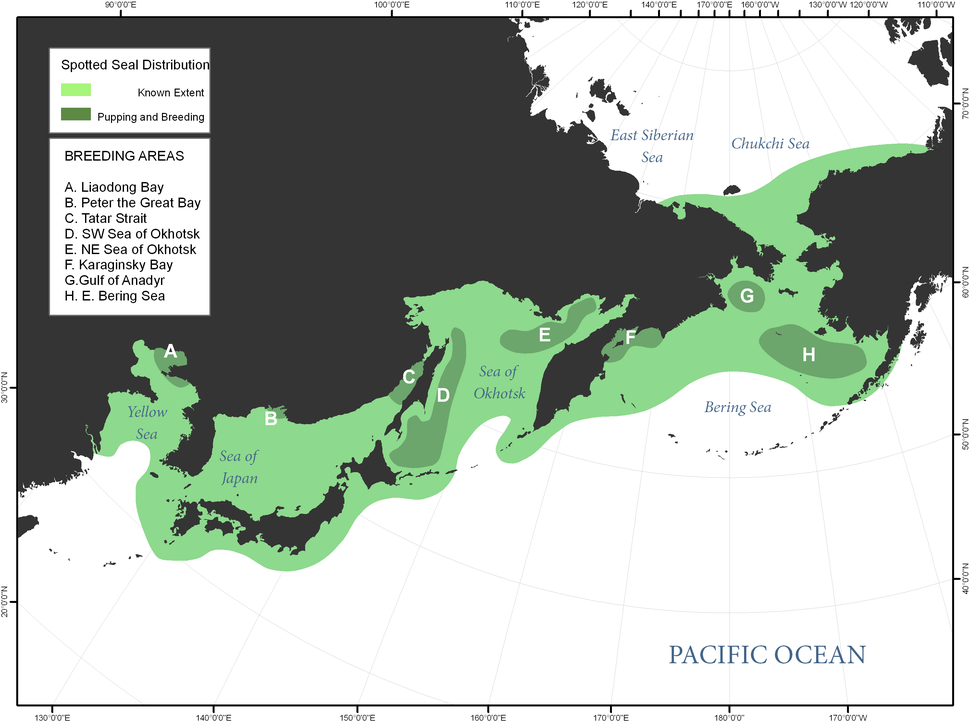 Spotted seal distribution in Bering Sea and surrounding areas