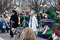 St Louis Mardi Gras Pet Parade 2011-16.jpg