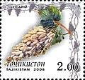Stamps of Tajikistan, 029-08.jpg