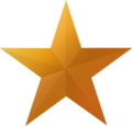 Bronze star icon