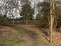 Start of RUPP on Sutton Common - geograph.org.uk - 374550.jpg