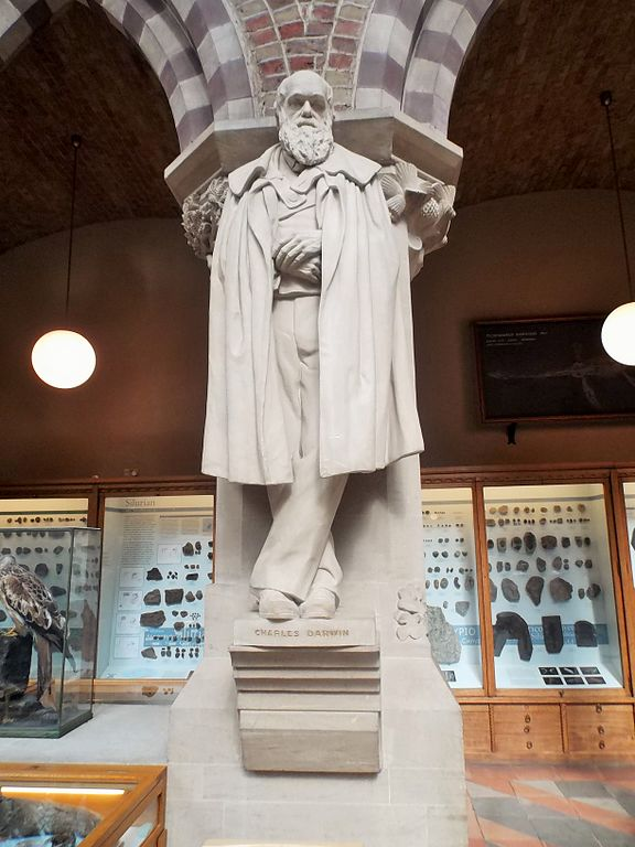 File:Statue of Darwin in the Natural History Museum in