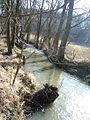 Stepanovsky potok 1.jpg