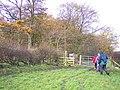 Stile and gate next to Pancake wood - geograph.org.uk - 1041111.jpg