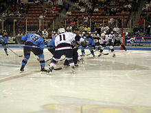 South Carolina Stingrays and Charlotte Checkers battle for control of the puck at a center ice face off; Charlotte Checkers at South Carolina Stingrays, April 17, 2009.