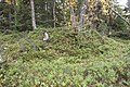 Storsjö 51 1.JPG