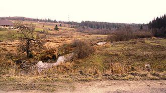 Stryi River - Stryj River near the village of Klymets. Skole district.