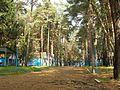 Summercamp - panoramio.jpg