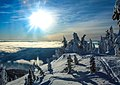 Sun Peaks Ski Resort - more shots amongst the snow ghosts (13653692784).jpg