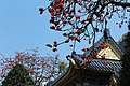 Sun Yat sen Memorial Hall in Spring.jpg