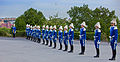 Swedish guards 2010.jpg