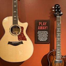 TGFT01 Play away - Taylor Guitar Factory.jpg