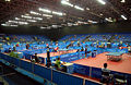Table Tennis Riocentro Pan 2007.jpg