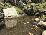Takueichi Pond and Koshokei Stream in Shukkei Garden.jpg