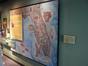 Tampa Bay History Center - Florida's First People display