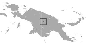Telefomin cuscus - Image: Telefomin Cuscus area