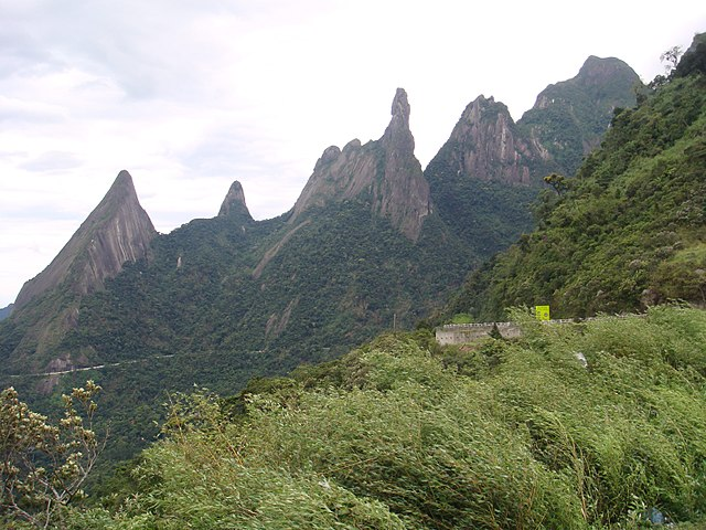 Atlantic Forest South-East Reserves_1