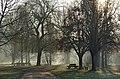 Thésée-la-Romaine (Loir-et-Cher) - Flickr - sybarite48 (1).jpg