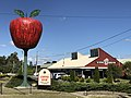 The Big Apple and delicatessen at Thulimbah, Queensland.jpg