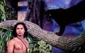 The Jungle Book (1942) Bagheera & Mowgli.png