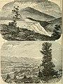 The Pacific tourist (1876) (14574603127).jpg