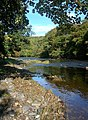 The River Ayr - geograph.org.uk - 579029.jpg