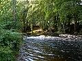 The Water Of Girvan - geograph.org.uk - 1470638.jpg
