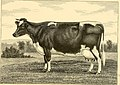 The breeds of live stock, and the principles of heredity (1887) (14758410446).jpg