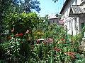 The flower bed near the house. July 2013. - Клумба перед домом. Июль 2013. - panoramio.jpg