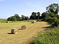 Tibbermore Church and Graveyard - geograph.org.uk - 74152.jpg
