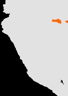 Ticuna language language