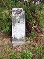 Toll Gate Cemetery Memphis TN L M Spicer.jpg