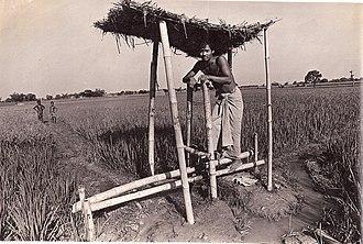 Treadle - A homemade treadle pump in use in Bangladesh