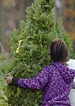 Trees for Troops, The SPIRIT of giving 161205-F-GX122-009.jpg