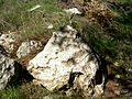 Triangular Rock-2 (4150039564).jpg