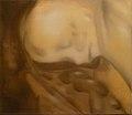 Tricot 2013 - Foetus.jpg