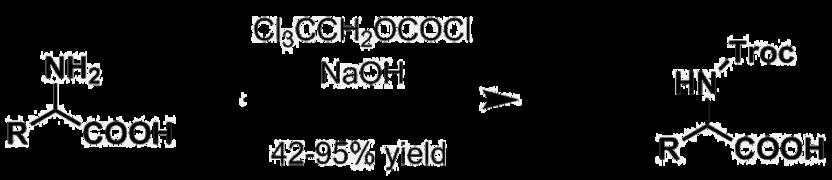 N-troc protecting group