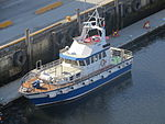 Trondheim Brattöra IMG 5995 Lise pilot vessel mmsi 257347700.JPG