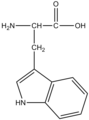 TryptophaneStructure.png