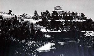 Japanese castle - Tsuyama Castle was a typical hilltop castle.