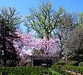 Tudor Place in April (22629686804).jpg