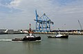 Tugs Union Coral and Smit Tiger R01.jpg
