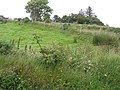 Tullynasiddagh Townland - geograph.org.uk - 884296.jpg